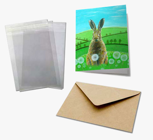 greeting card sample pack